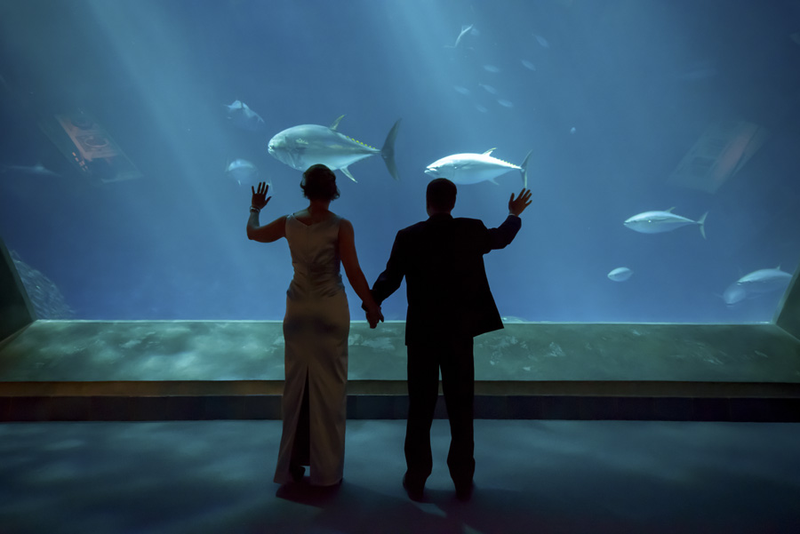 aquarium wedding venue Bay Area